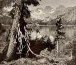 Ansel Adams - Parmelian Prints of the High Sierras